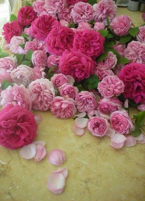mise en scène florale