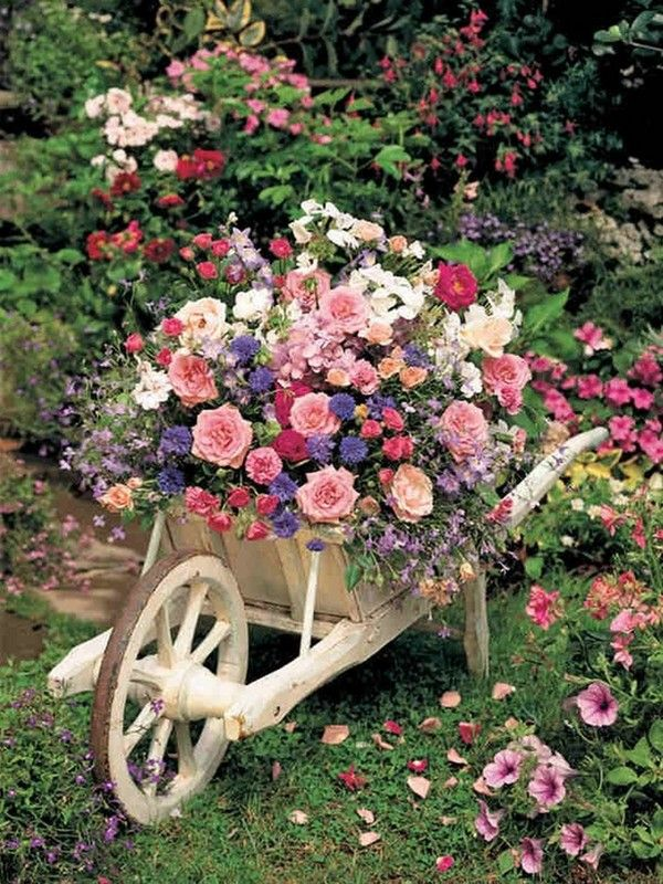 belle brouette fleurie