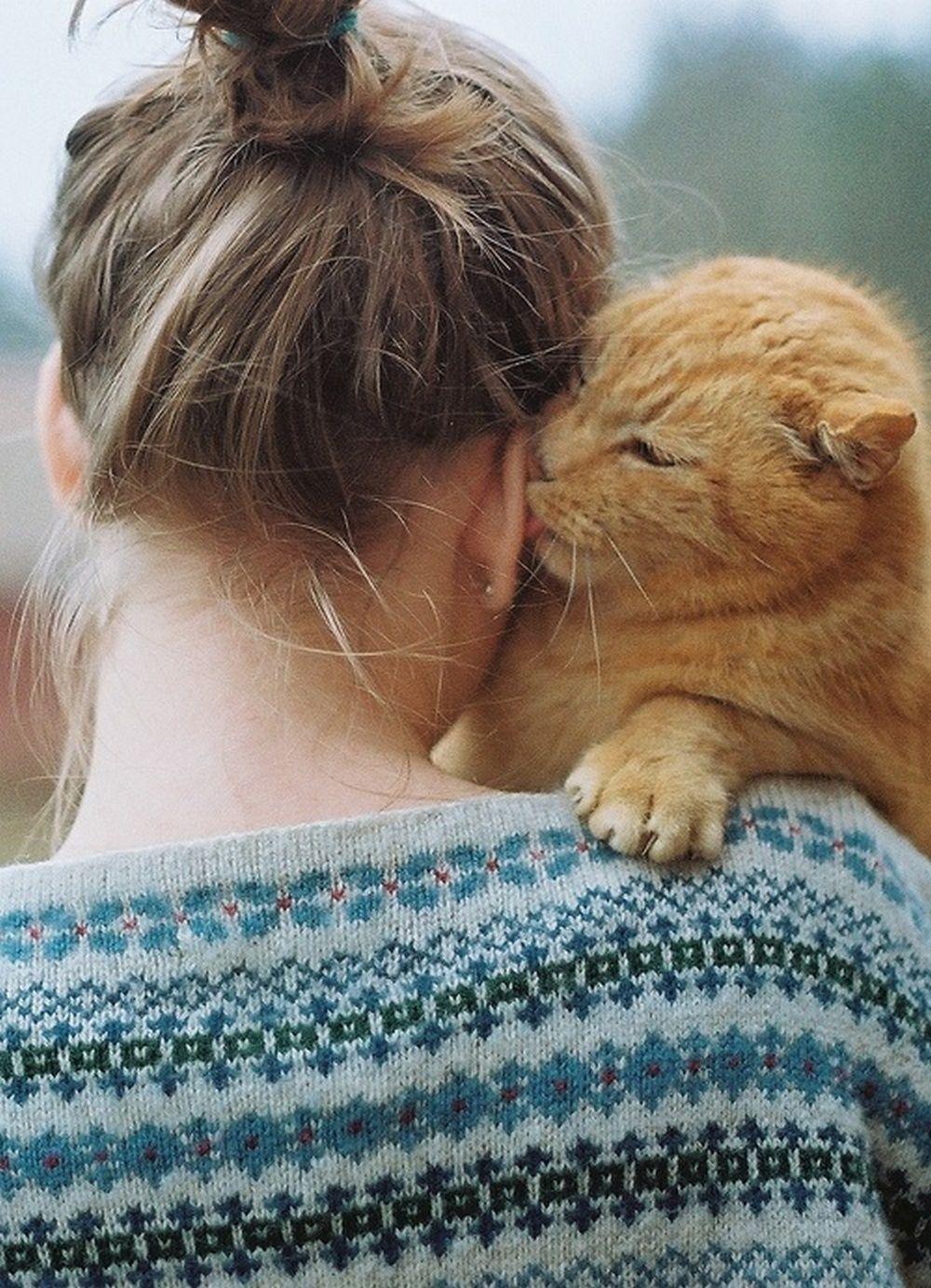 Фото девушка целует льва 8 фотография