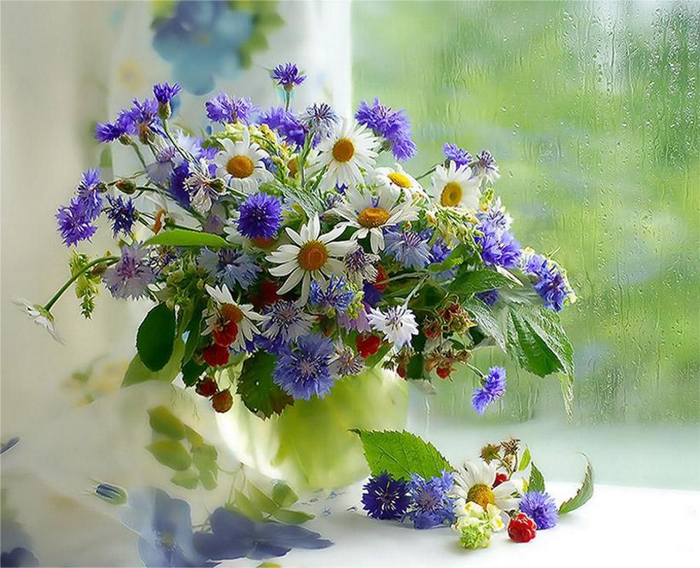 Image du Blog ayala.centerblog.net